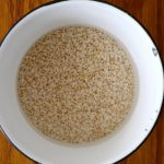 水に浸した発芽玄米