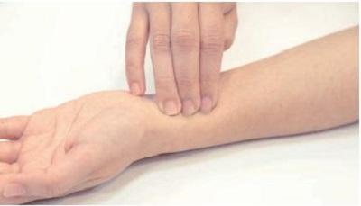 脈拍の測り方:押え方